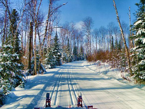 Beautiful skiing through the woods at Bearskin Lodge