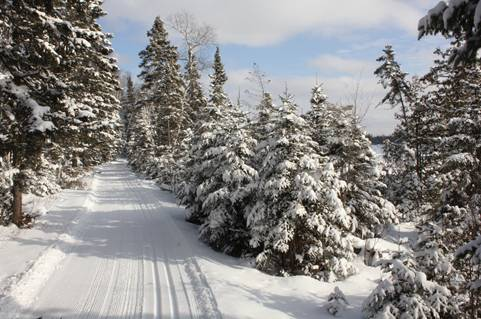 Central Gunflint Cross Country Ski Trail System - Photo by Dan Baumann, 1/25/13
