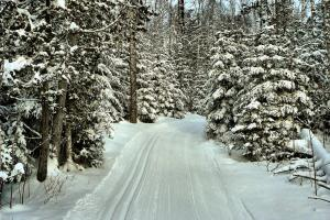 Bearskin Lodge newly groomed ski trail