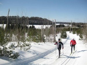 Skiers on the Central Gunflint Trail System, near Flour Lake.  Photo from Ingrid Remak, City of Lakes.