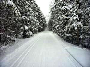 Deer Mouse Trail on 12/18. Photo by Zach Baumann.