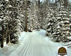 ski trail with logo