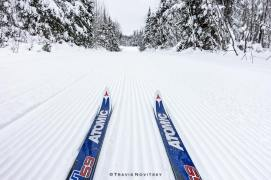 skis on corduroy by Travis Notvitsky