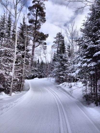Photo of our ski trails taken by Karen Reynolds