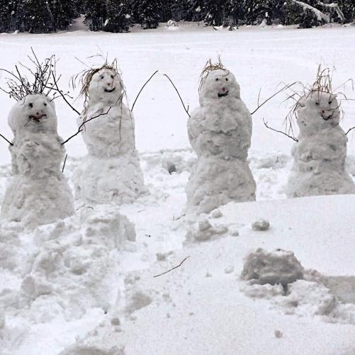 snowmen adj aviary