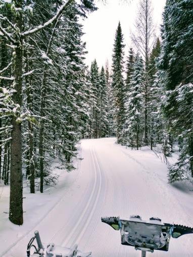 2.19.2018 ski trail grooming